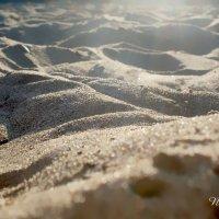 Summer sand :: Natalia Koroleva