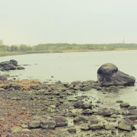 Финский залив :: Анастасия Лазарева