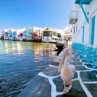 Греция :: текила *