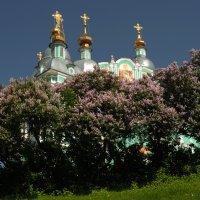 Смоленск!!! :: Олег Семенцов
