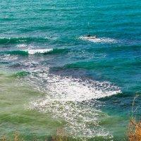 Краски моря :: Елена Васильева