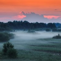 Закат в белорусском полесье :: illyaBel -