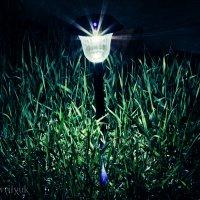 Ночь, улица, фонарь... :: Даниил Гаврилюк