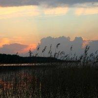 Закат на озере :: Наталия Зыбайло