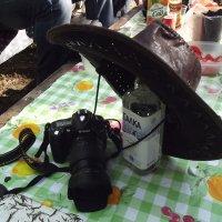 Весна.Ковбойская шляпа. :: Виталий Виницкий