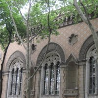 Бродская синагога :: Маера Урусова