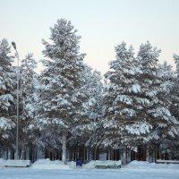 Зима :: Евгений Коротков