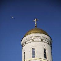 Над куполом... :: Сергей Кудрявцев