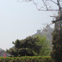 Вид с Великой Китайской Стены :: Мария Лебедева