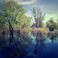 Весенний :: Svetlana Sneg