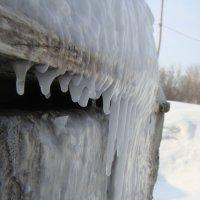 Зима :: Маргарита Марченко