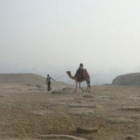 Каир, 2010г. :: Маргарита Марченко