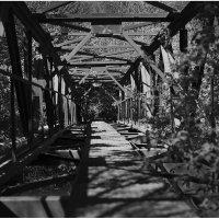 Мост :: Елена Васильева