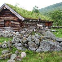 В горах Норвегии :: Юрий Гавришин