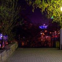 Ночная аллея :: Андрей Даниленко