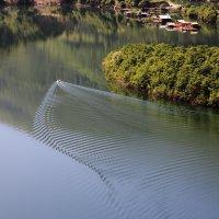 Роспись на воде :: Valery Penkin