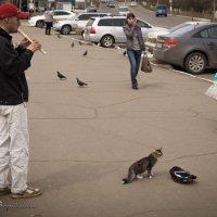 Одинокая мелодия для флейты :: Андрей Борисенко