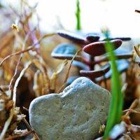 Каменное сердце :: Дмитрий Гецеров