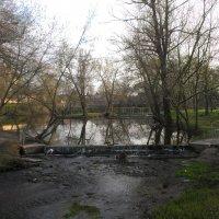 Утро у реки :: Евгений Кочуров