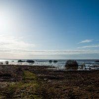 Плещеево озеро :: Константин Нестеров