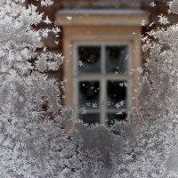 зимняя  пора :: Дмитрий Потапов