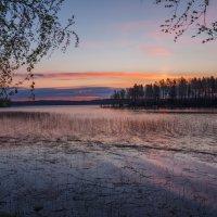 Белая ночь :: Наталия Крыжановская