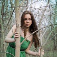 в ожидании весны :: Катерина Бахтина