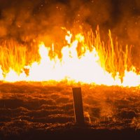 Первые пожары :: Алена Галяева