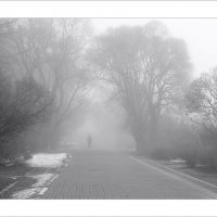 Апрельский туман :: Владислав Филипенко