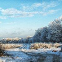 пришла зима... :: лиана алексеева