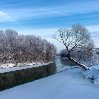 Разукрасилась зима... :: Дарья Семёнова