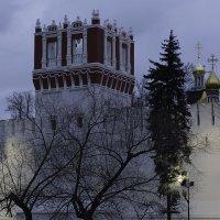 Новодевичий монастырь. Фрагмент. :: Александр Аксёнов