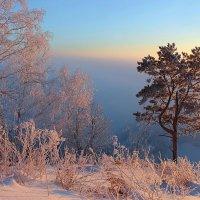 Морозное утро на берегу :: И.В.К. ))
