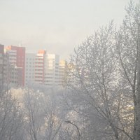 Из окна :: Наталья Сиротина