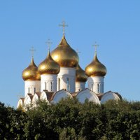 Купола Успенского собора :: Вера Щукина