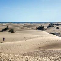 Spain 2015 Canary Gran Canaria Maspaloma :: Arturs Ancans