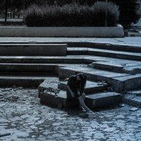 Аленушка в парке.... :: Вероника Ходаренок