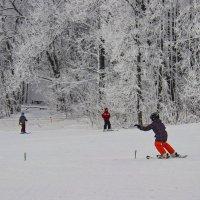 Зимние забавы. :: Альмира Юсупова