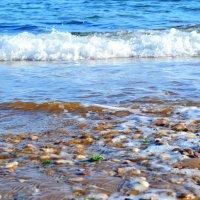 Море :: Виктор Шандыбин
