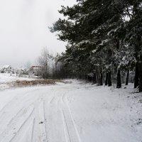 Зимняя дорога :: Виктор Сергеевич Конышев