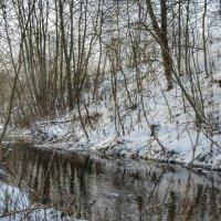 Смоленщина зимой :: Милешкин Владимир Алексеевич