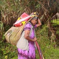 Папуасы :: Антонина