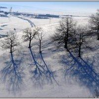 На заснеженных склонах :: Андрей Заломленков
