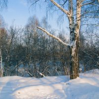 Зима 2008_1 :: Oleg Tumakov