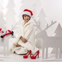 Рождественские истории 2016 :: Natalia McCarova