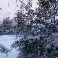 После снегопада :: Мария