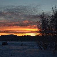 Зимние дни :: Ольга