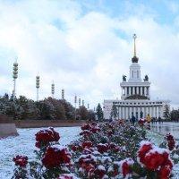 Первый снег :: Юля Колосова