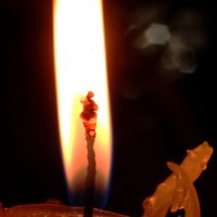 Приручение огня-2 :: Ирина Сивовол