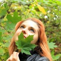Лесные импровизации :: Наталья Д